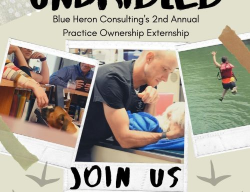 """Inspiring the Next Generation of Veterinary Practice Owners, Blue Heron Announces """"Unbridled"""", their 2nd Annual Practice Ownership Externship"""