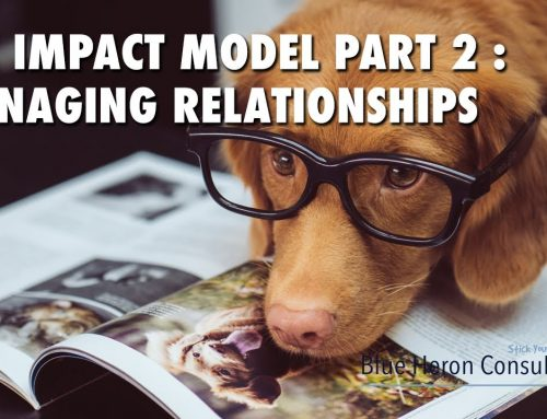 The IMPACT Model Part 2 : Managing Relationships