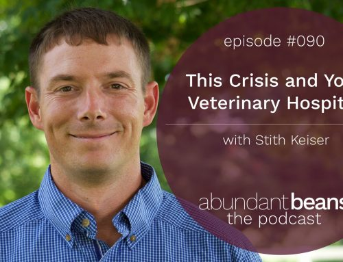 Podcast: This Crisis and Your Veterinary Hospital with Stith Keiser